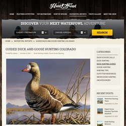 Guided Duck and Goose Hunting in Colorado