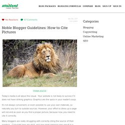 Noble Blogger Guidelines: How to Cite Pictures