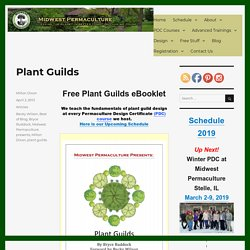 Plant Guilds - Midwest Permaculture