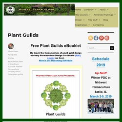 Plant Guilds Booklet Midwest US Permaculture