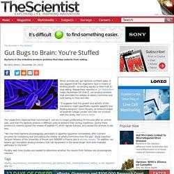 Gut Bugs to Brain: You're Stuffed