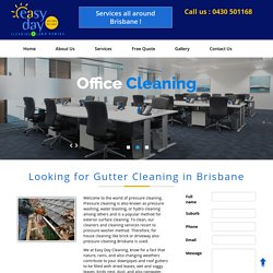 Roof Gutter cleaning Brisbane. Guttering