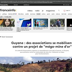 "Guyane : des associations se mobilisent contre un projet de ""méga-mine d'or"""
