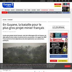 En Guyane, la bataille pour le plus gros projet minier français