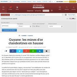 Guyane: les mines d'or clandestines en hausse