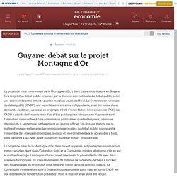 Guyane: débat sur le projet Montagne d'Or