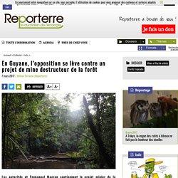 En Guyane, l'opposition se lève contre un projet de mine destructeur de la forêt