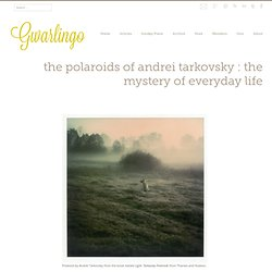 Gwarlingo – The Polaroids of Andrei Tarkovsky : The Mystery of Everyday Life