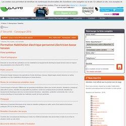 Formation : Habilitation électrique personnel électricien basse tension Paris, Marseille, Lyon