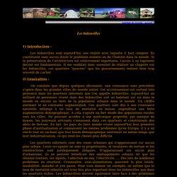 Habitats du Monde : Les bidonvilles