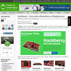 Hackberry : Une autre alternative au Raspberry pi