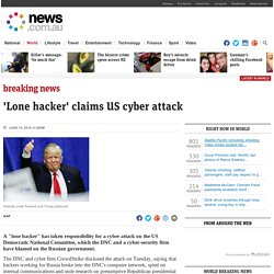 'Lone hacker' claims US cyber attack