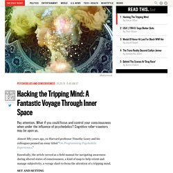 Hacking the Tripping Mind: A Fantastic Voyage Through Inner Space