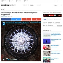 CERN's Large Hadron Collider Comes to Projection-Mapped Life