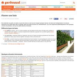 Haie : planter et choisir les arbustes