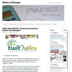 Haïku Speed Build : Quand arts,maths et poème se mélangent