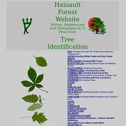 Hainault Forest Website