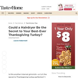 Could a Hairdryer Be the Secret to the Best-Ever Thanksgiving Turkey?