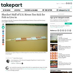 Half of U.S. Rivers Too Sick for Fish to Live in