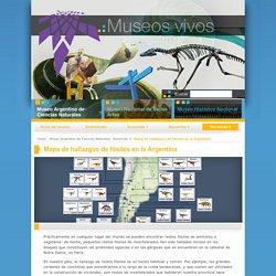Mapa de hallazgos de fósiles en la Argentina « Museos vivos