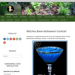 Witches Brew Halloween Cocktail - The Gardening Cook