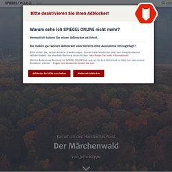 Hambacher Forst: Der Märchenwald