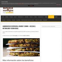 Hamburguesa de Berenjena, jengibre y comino – Acelera el metabolismo y Quema Grasa.