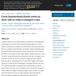 Great hammerhead sharks swim on their side to reduce transport costs