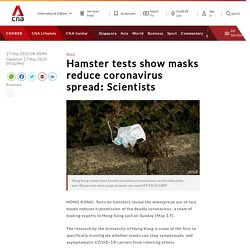 Hamster tests show masks reduce coronavirus spread: Scientists