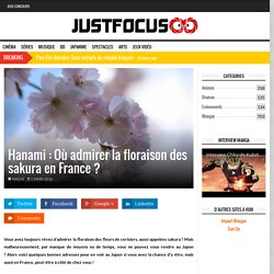 Hanami : Où admirer la floraison des sakura en France ?