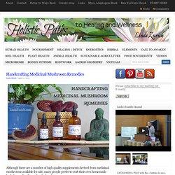 Handcrafting Medicinal Mushroom Remedies : Linda Zurich