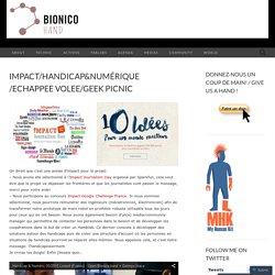 Impact/Handicap&Numérique/Echappee Volee/Geek Picnic