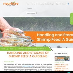 Handling and Storage of Shrimp Feed: A Guideline
