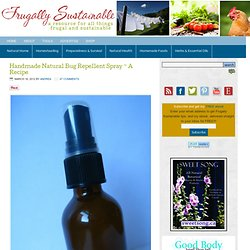 Handmade Natural Bug Repellent Spray ~ A Recipe