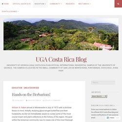 Hands on the Herbarium! – UGA Costa Rica Blog