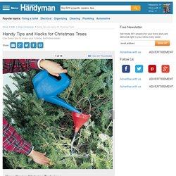 Handy Tips and Hacks for Christmas Trees