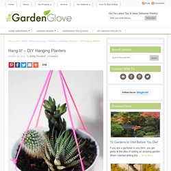 Hang It! – DIY Hanging Planters