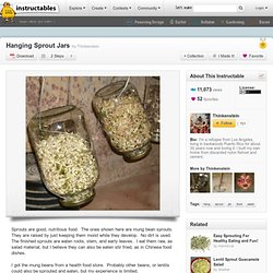 Hanging Sprout Jars