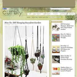 How To: DIY Hanging Succulent Garden » Curbly