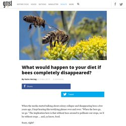 What would happen to your diet if bees completely disappeared?