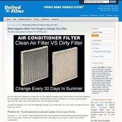 What Happens When You Forget to Change Your Filter ?