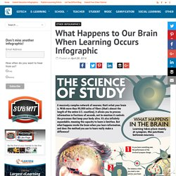 What Happens to Our Brain When Learning Occurs Infographic