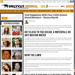 Find Happiness With Four Little Known Mood Boosters ~ Danna Norek