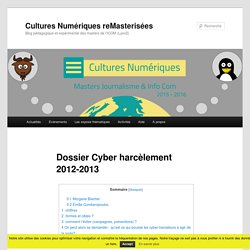 Dossier Cyber harcèlement 2012-2013