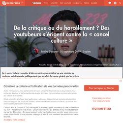 De la critique ou du harcèlement ? Des youtubeurs s'érigent contre la « cancel culture » - Société