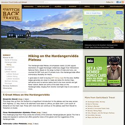 Hiking on the Hardangervidda Plateau