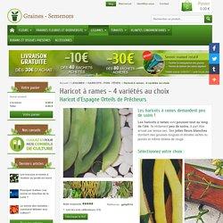 Graines de Haricots à rames – découvrez nos variétés très productives.