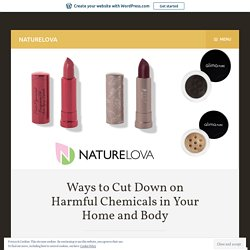 Ways to Cut Down on Harmful Chemicals in Your Home and Body – NATURELOVA