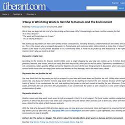 3 Ways In Which Dog Waste Is Harmful To Humans And The Environment