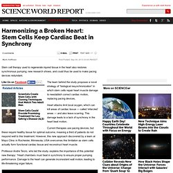 Harmonizing a Broken Heart: Stem Cells Keep Cardiac Beat in Synchrony